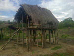 Lingo House